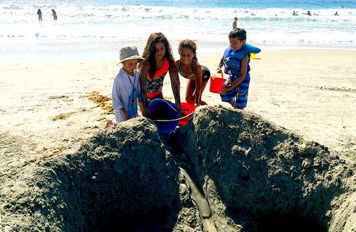 beachClean1